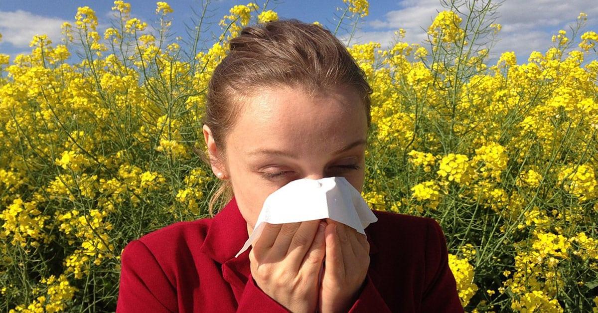 allergy-1200X628